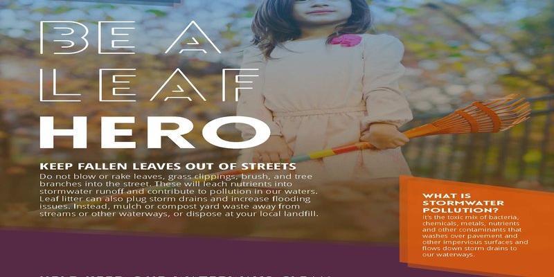 leaf hero cover sheet